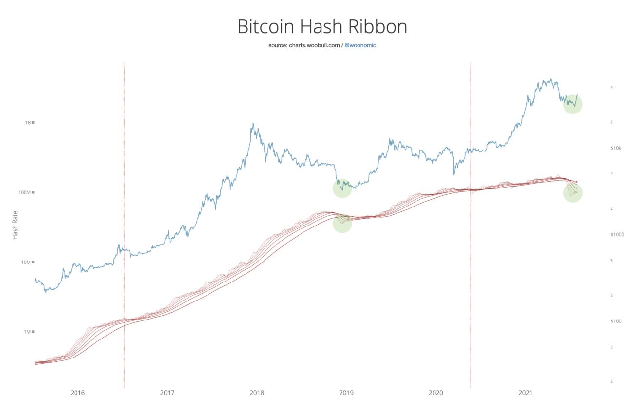 btc hash rate 04082021
